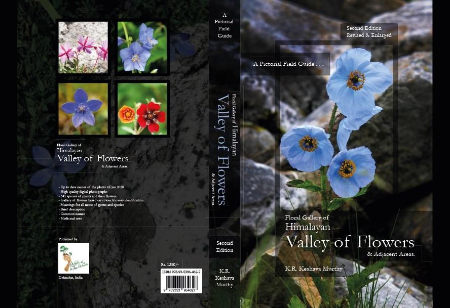 cover_landscape
